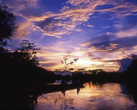 AR PN AMAZONIA ORELLANA LAGUNAS 078 (2)