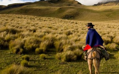 ecuador-lands-537